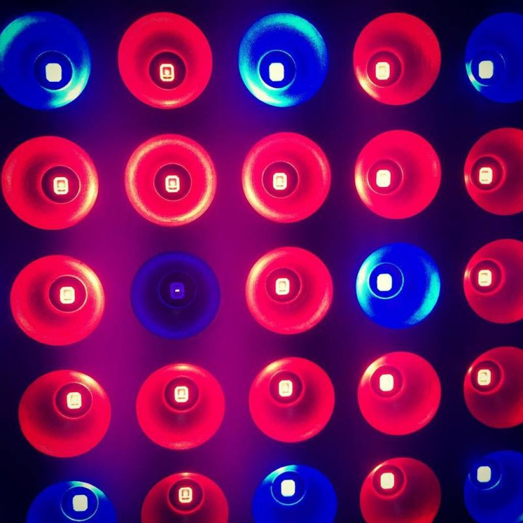 blue-and-red-leds