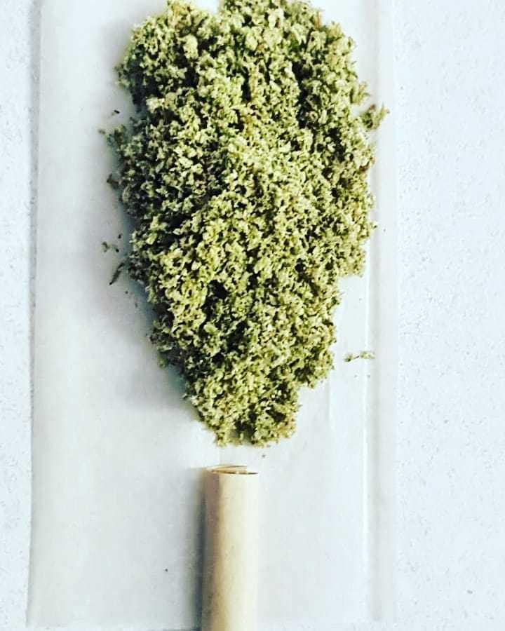 joint-durban-poison