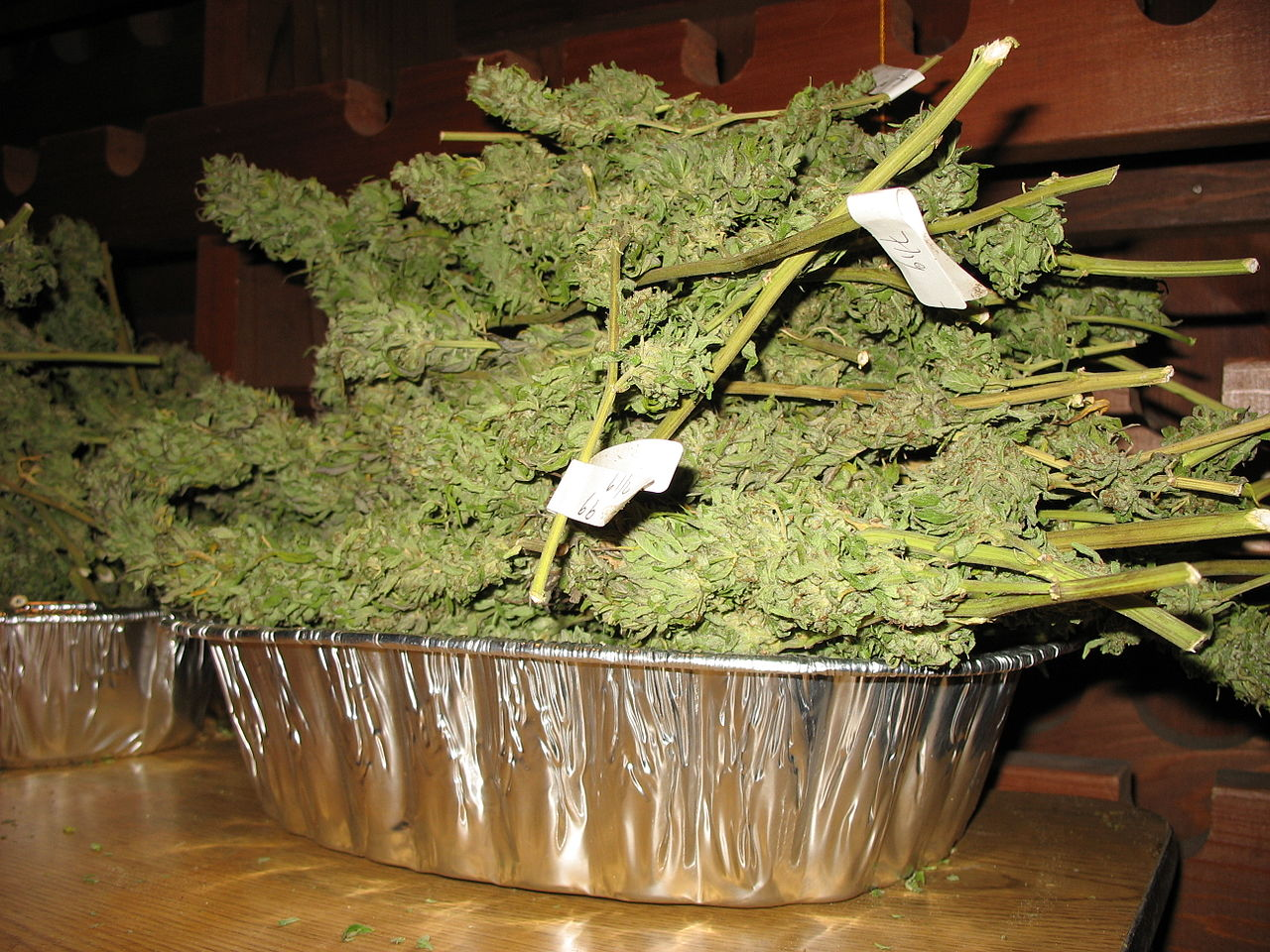 Outdoor Strains Commonly Found And Grown In South Africa