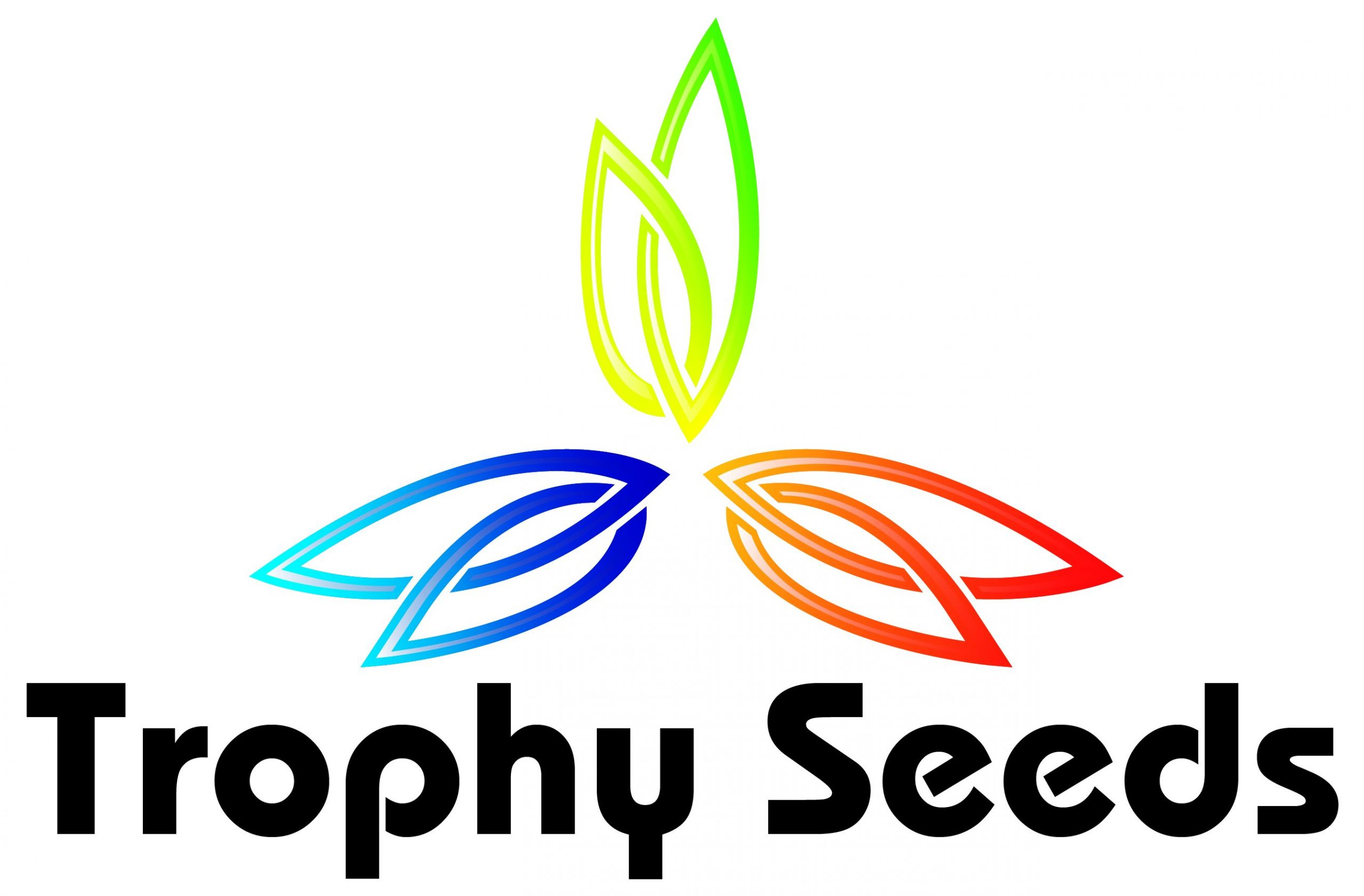 Trophy Seeds South Africa Review - 10 Best Marijuana Seeds | Cannabis Connect