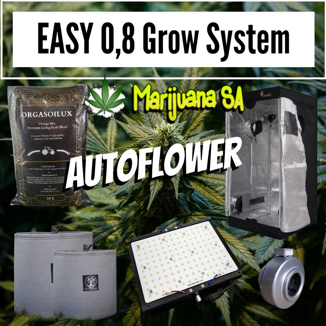 Easy 0,8 Grow System with Autoflowering Seeds